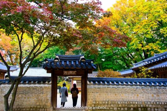 ใบไม้เปลี่ยนสีในสวนฮูวอน